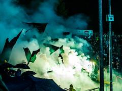 151016_Scp_Vs_Rostock (www.Jubelschuppen.de) Tags: game sc field sport football fussball action outdoor stadium soccer fans pyro emotions rostock hansa münster ultras preussen sportclub choreo preussenstadium