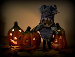 Happy halloween (pe.kalina) Tags: halloween doll blythe petshop petite lps
