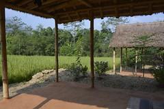 Home (www.adrenalinenepal.com) Tags: travel nepal color colour green landscape asia explore villagelife campnepal