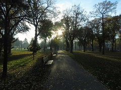 Autumn's delight (I.C. Photo) Tags: park serbia belgrade beograd 7am srbija tamajdan