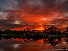 Morning Glow (DonMiller_ToGo) Tags: sky lake nature sunrise landscape florida g5 sunrises skyscapes birdwatching hdr goldenhour rookery onawalk skycandy 5xp hdrphotography 5exposures venicerookery