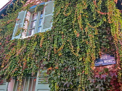 Rue Monet (Anna Sikorskiy) Tags: flowers autumn sunset urban stilllife plants sunlight house abstract france window nature colors beauty architecture season town colorful europe artistic fineart atmosphere naturallight historic normandy canonpowershots90