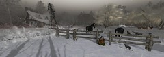 one night in december (flubs) Tags: sl secondlife winter snow outdoor landscape nature flickr slphotography dreamy virtual surreal night