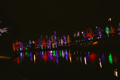121016-3 (kara_muse) Tags: christmaslights vitruvianpark