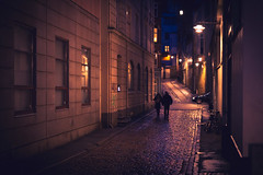 003-365 The night is the hardest time to be alive and 4am knows all my secrets (cohenvandervelde) Tags: 35mm 365project 550d apsc aarhus city cohenvandervelde creativecommons dof denmark scene scout snap souls worldstreetphotography blue canon color colour depthoffield gold lights people primelens purple silhouette street streetphotography streettog sunset tunnel