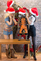 """This is Embarrassing"" Outtake (edwicks_toybox) Tags: 16scale christmas cowboyboots cowgirl femaleactionfigure groot hottoys phicen rocket rocketraccoon santahat sexylibrarian stormytempest vanhelsing"