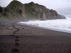 Huellas / Footprints (Javiera C) Tags: constitución chile costa coast playa beach shore litoral mar sea océano ocean arena sand rocas rocks paisaje landscape nature naturaleza huella footprint