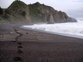 Huellas / Footprints