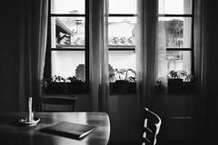 (IMAphotoArt) Tags: bianconero bianco nero monocromo finestra piante tavolo sedia luce