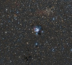 NGC 7129 (Paddy Gilliland @ Image The Universe) Tags: ngc7129 ngc ic space nebula nebulae stars night astro astronomy astrophoto astrophotography ap lrgb rgb hubble cosmos texture abstract outdoor wide widefield nighttime sky dark colours astrometrydotnet:id=nova1916444 astrometrydotnet:status=solved