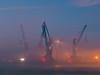 Kräne im Nebel 01 (Torsten schlüter) Tags: deutschland hafen hambug nebel 2016 52mm