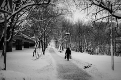 Snowy road (- interact -) Tags: stockholm sweden winter cold ice landscape lonely street fujifilm xe2 prime 50mm