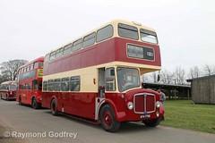 AFN 778B preserved AEC Regent V /Park Royal - East Kent (Faversham 2009) Tags: maidstone kent detling bus buses afn778b preserved aec regent v parkroyal eastkent