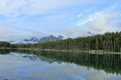 Morning Fog (Patricia Henschen) Tags: morning clouds cloudy boreal forest lake lac herbert banff banffnationalpark nationalpark parkscanada parks parcs mountains mountain rockymountains rockies rocky northern canadian canada canadianrockies reflection reflections water lakelouise alberta icefieldsparkway bowrange fog