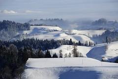 Winterday (JohannesMayr) Tags: switzerland bern kantom ahorn schweiz oberaargau eriswil schnee wald snow sonne sun