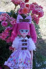 Lorraine (Sin.da.a.ta.ri.en) Tags: takara tomy licca chan fashion doll pink hair sweets paradise