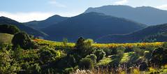 Mountain Light Slant (davidpemberton78) Tags: mountain scenery autumn lavoulte lhérault languedocroussillon