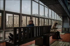 1m2_DSC1236 (dmitry_ryzhkov) Tags: grass bridge bench sit seat look looks contact eye terminal station day woman women lady sony alphacolor colour colourful colours colorful colors art city europe russia moscow documentary journalism street streets urban candid life streetlife citylife outdoor outdoors streetscene close scene streetshot image streetphotography candidphotography streetphoto candidphotos streetphotos moment light shadow people citizen resident inhabitant person portrait streetportrait candidportrait unposed public face faces eyes