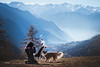Italy 2017 Backstage (Alicja Zmysłowska) Tags: backstage alps italy dog dogs photographer border collie collies mountains winter snow wintertime pet pets camera canon working