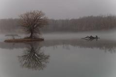 Misty Morning (Kerryjwagner) Tags: beaverisland statepark tree fog