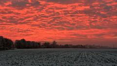Fire in the Sky over Emmen (Alexander Adema) Tags: emmen nederland netherlands fire sky lucht rood horizon landscape snow
