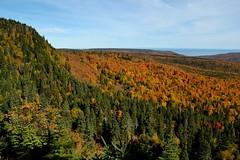 Sentier des lacs ( Automne ) (pascal_roussy) Tags: paysage landscape parcnationalforillon nature gaspésie québec canada montagne mountain nikon d3100