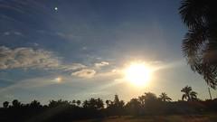 parhelia sun and cirrus clouds - a beautiful sunset (er_kohl) Tags: cirrus clouds sunset cape coral lee fl swfl sundog sun dog parhelion parhelia sky erkohl