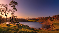 Oh Danny Boy, The Pikes, The Pikes Are Calling (Adam West Photography) Tags: adamwest animal canon cottage cumbria district england exposureblending farm lake langdale longexposure loughrigg mood photoshop pikes pine rayapro sheep tarn trees uk water rocks