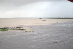 Manaus, AM, Brasil (Proflázaro) Tags: amazônia manaus viagem natureza rionegro rioamazonas rio riosolimões encontrodaságuas ecologia