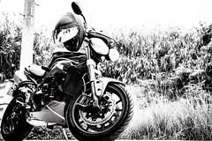 IMG_1069 (HoragamePhoto) Tags: speedtriple motorcycle bike