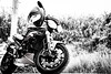 IMG_1069 (HoragamePhoto) Tags: speedtriple motorcycle bike