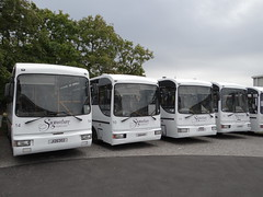 Signature Cannons (Coco the Jerzee Busman) Tags: uk bus islands coach signature cannon toyota jersey coaster channel lcb