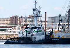 PETER F GELLATLY, now in VANE colors, in New Jersey, USA. August 2015 (Tom Turner - SeaTeamImages / AirTeamImages) Tags: nyc usa newyork green water port harbor newjersey dock marine unitedstates harbour transport spot pony maritime transportation tugboat tug vane docked tow channel bayonne spotting waterway towing gardenstate kvk tomturner killvankull peterfgellatly