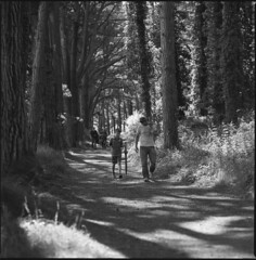 man and boy (steve-jack) Tags: hasselblad v 501cm medium format film 120 perceptol blackandwhite bw epson v500 6x6 wales gower
