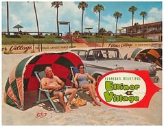 Ellinor Village cover (beggsgirls) Tags: grandaddy ellinorvillage