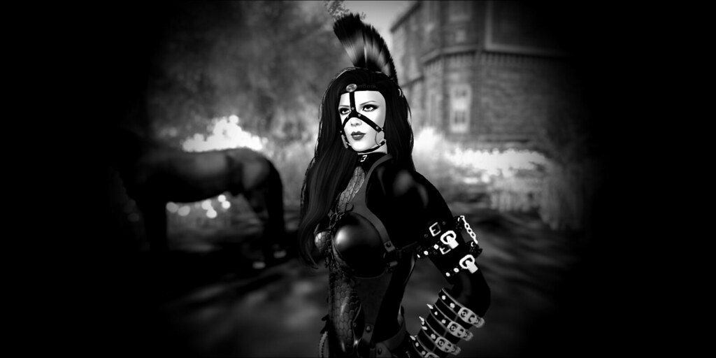 Erotic ponyplay pictures other variant