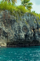 Rock (Mximo Hernndez) Tags: sea hot water weather rock palms turquoise tropical vegetation atsea sosua