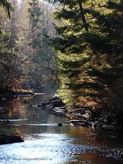 20151102085908 (koppomcolors) Tags: sweden sverige scandinavia värmland varmland koppomcolors