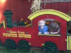 """Paul and Inde in the Sonny Acres Pumpkin Express • <a style=""""font-size:0.8em;"""" href=""""http://www.flickr.com/photos/109120354@N07/22830477727/"""" target=""""_blank"""">View on Flickr</a>"""