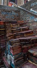 Acqua Alta (Lydia Tausi Photography) Tags: venice italy cats canon amazing italia magic books bookstore caos venecia venezia castello eos350d sanmarco acquaalta libreria veneto sestiere lydiatausi
