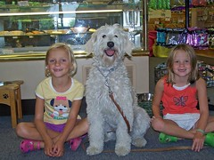 this-is-ginger-picking-something-out-at-the-doggie-deli--shes-one-of-lilly-and-tobys-girls-_2778018567_o