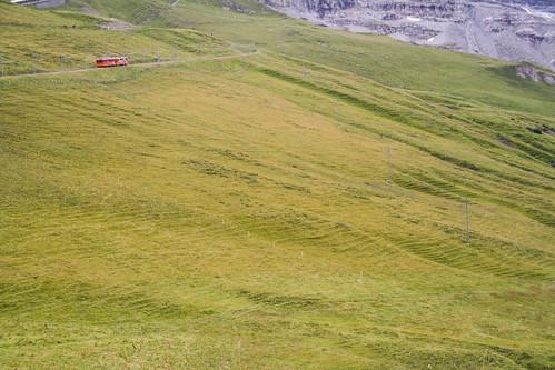 Little Red Mountain Railway