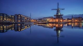 Dutch landscape, Haarlem