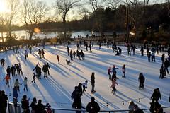 skate (greenelent) Tags: prospectpark brooklyn skating iceskating rink sunset light 365 photoaday