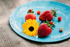 Ripe red strawberries, raspberries and a yellow flower on a blue flat plate (ddanilejko) Tags: summer ripe food garden berry fruit harvest strawberry outdoor fresh agriculture red season organic green nature plant sweet gardening freshness growing natural vitamin bucket closeup background healthy strawberries farm beautiful raw nutrition field vegetarian eating dessert seasonal health home glade horticulture ingredient flower yellow blue plate raspberries burlap macro vibrant