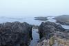 Fog on South Beach, Pacific Rim National Park, Vancouver Island, BC (Jim 03) Tags: long beach largest longest pacific rim national park vancouver island bc wickanninish bay tofino ucluelet south jim03 jimhoffman jhoffman jim wwwjimahoffmancom wwwflickrcomphotosjhoffman2013