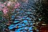"Water : Blue Fish? (esala.kaluperuma) Tags: kunst τέχνη arte ""изобразительное искусство"" résumé αφηρημένο zusammenfassung аннотация abstracto esala kaluperuma photograph uk midlands leicestershire loughborough water reflection waves fish lake river sonyxperiaz2 esalakaluperuma"