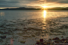 Sunrise @ Strangford Lough (dareangel_2000) Tags: dariacasement sunrise strangfordlough codown northernireland killyleagh water sea ocean coast shoreline pebbles sun sunup