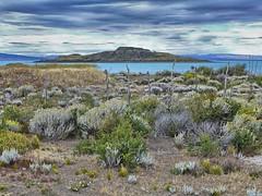 Isla Solitaria - El Calafate (Luna y Valencia) Tags: islasolitaria hdr elcalafate argentina lagoargentino santacruz patagonia
