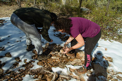 IMG_6890 (dvdstvns) Tags: arizona geodes payson
